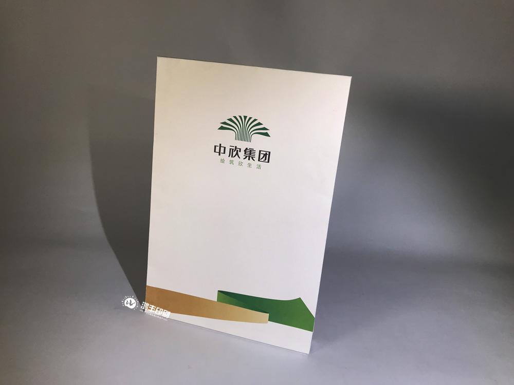 中欣集團—檔案袋第二款02.jpg