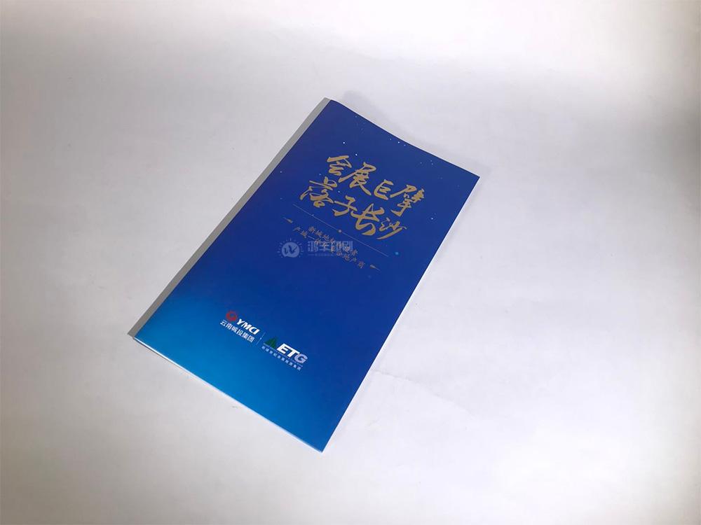 云南城投集團折頁01.jpg