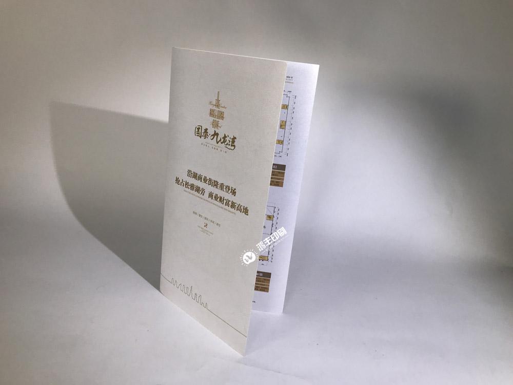 国泰九龙湾折页02.jpg