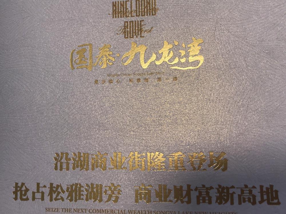 国泰九龙湾折页05.jpg