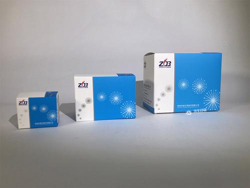 中道生物—卡盒