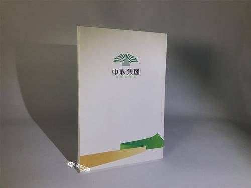 中欣集团—档案袋第二款