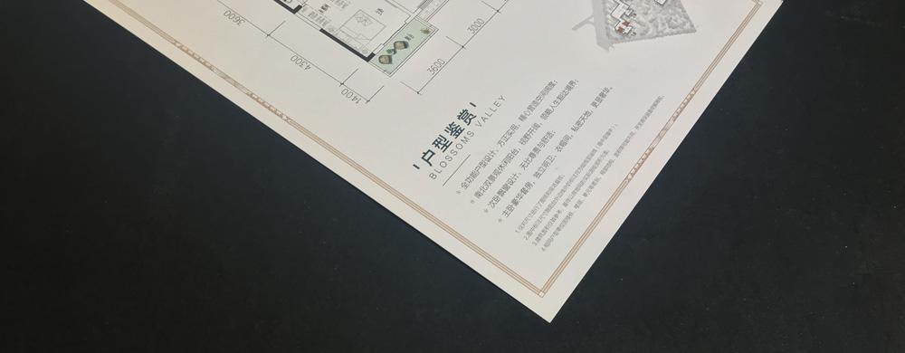 天鴻嘉園—戶型圖03.jpg